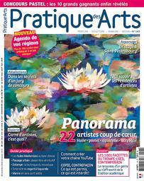 Pratique des arts : peinture, sculpture, gravure, dessin / Dir. de la publ. Edith Cyr-Chagnon |