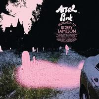 Dedicated to Bobby Jameson / Ariel Pink   Ariel Pink. Chanteur