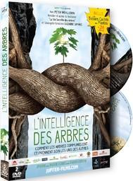 L' intelligence des arbres / Julia Dordel, Guido Tolke, réal. |