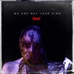 We are not your kind / Slipknot | Slipknot. Musicien