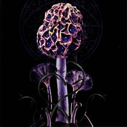Hallucinogen / Blut Aus Nord | Blut Aus Nord. Musicien