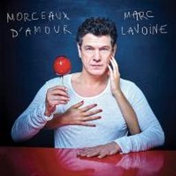 Morceaux d'amour / Marc Lavoine |
