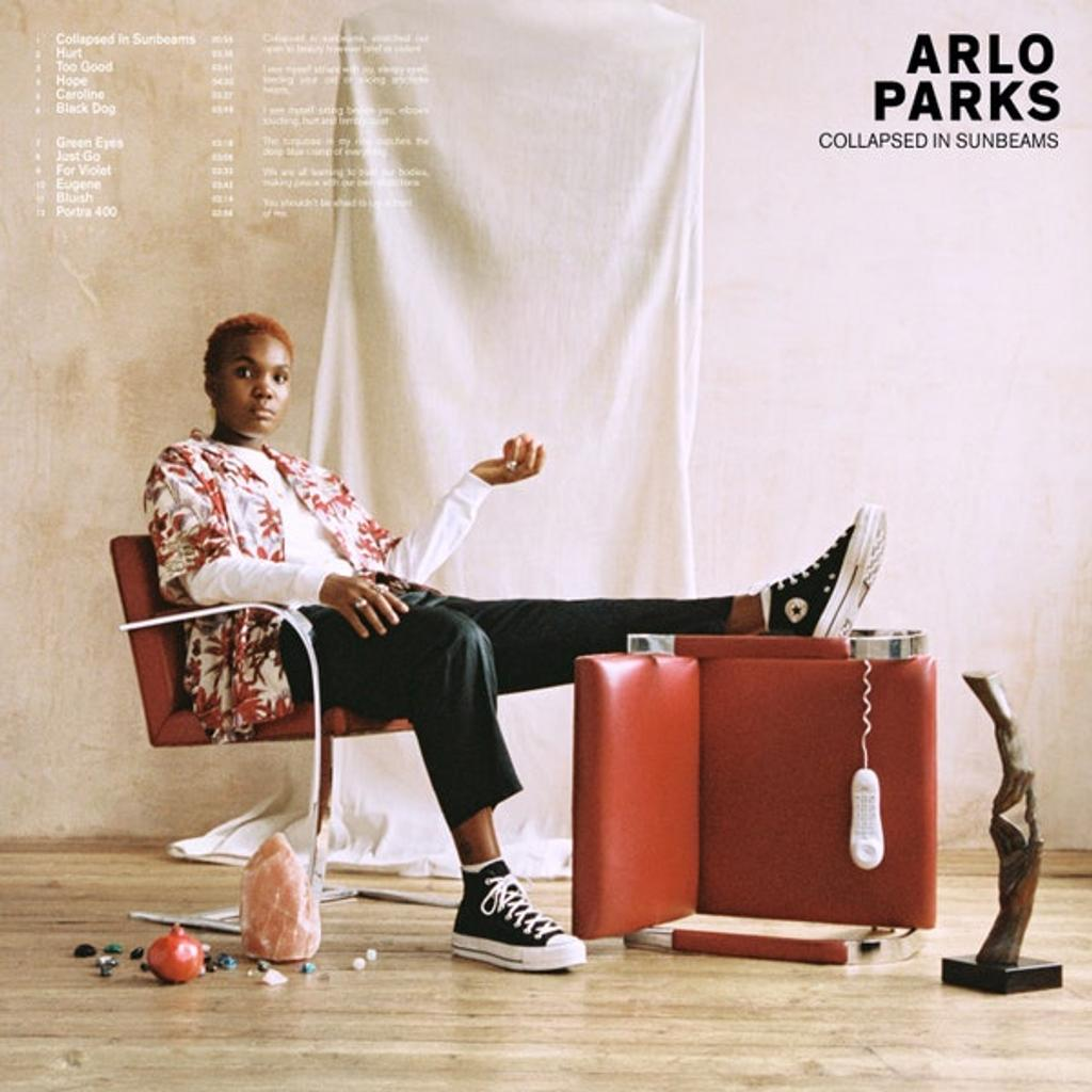 Collapsed in sunbeams / Arlo Parks |