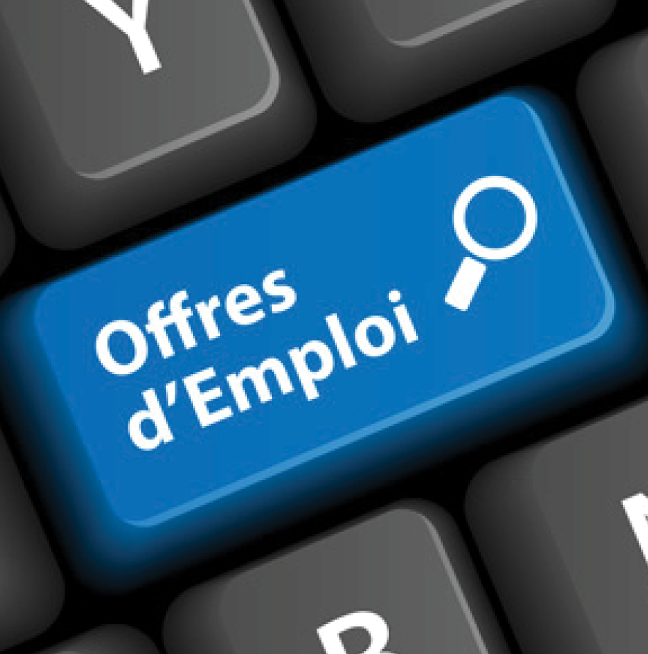 Initiation à l'utilisation de l'ordinateur et d'Internet dans le cadre d'une recherche d'emploi |